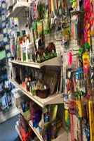 Pet Grooming/Supplies/Fish in NY 30175