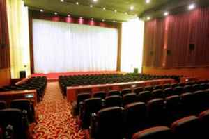 Theater For Sale-Suffolk County, NY  - 30019
