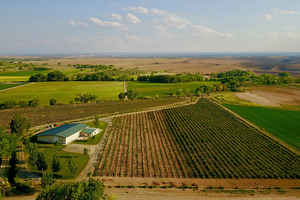 ranch-vineyard-and-winery-olathe-colorado