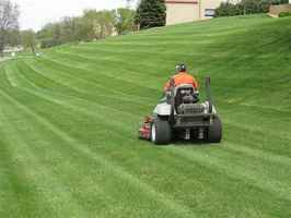 Profitable Northern CO Landscape Maintenance Co.