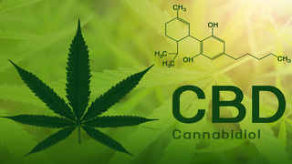 Hemp CBD Automated Website
