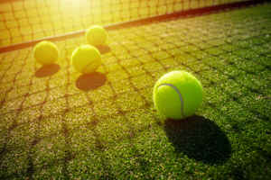 Charlotte Area Tennis Business