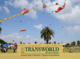 Fun and Easy to Operate Kite Shop