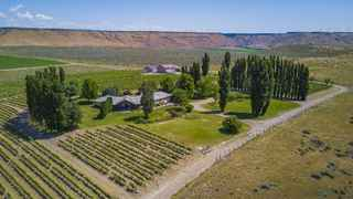 Cold Springs Winery & Vineyard