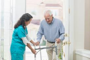 IN-Home Senior Health Care Service Business, wi...