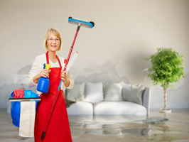 Disaster Restoration and Janitorial Franchise