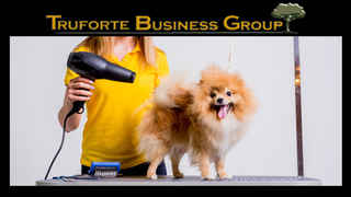pet-boarding-grooming-and-daycare-facility-florida