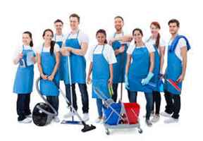 Just Reduced-Independent Cleaning Business