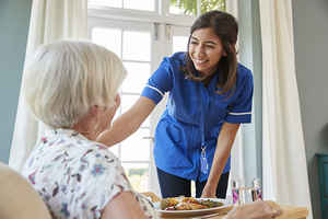 Franchised Home Care Provider: Established, Pro...
