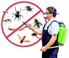 Pest Control Services Business for Sale