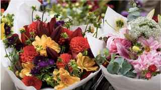 Blossom Street Florist For Sale in FL