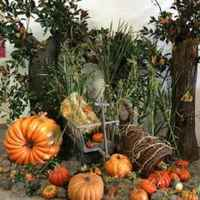 Commercial Florist in Queens County- 24223
