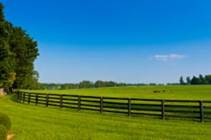 niche-agricultural-services-company-400k-sd-denver-colorado
