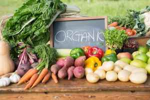 organic-natural-foods-distributor-new-york