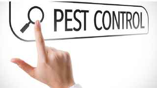pest-control-business-in-broward-county-davie-florida