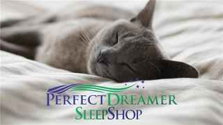 A Good Night Sleep Shop (profitable, family owned)