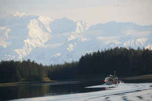Alaska Businesses for Sale - Buy a Business in AK