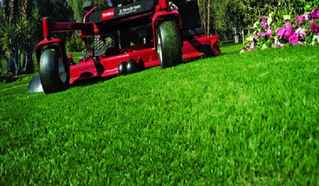 lawn-servicing-business-micco-florida