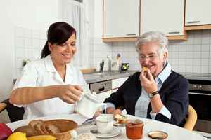 Established Home Care Business in Roseville