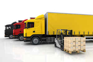 Well Established Trucking/Container Company