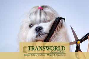 Mobile & In Store Pet Grooming
