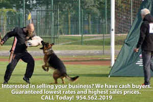 Profitable Dog Training & Boarding Academy