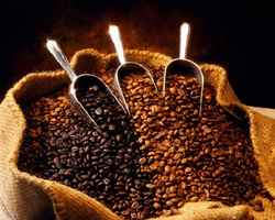 coffee-roasting-business-california