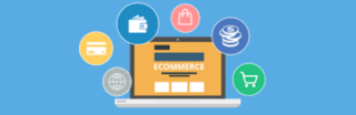 Niche E-Commerce Business with Amazon Legacy Ve...