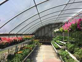 Agriculture and Garden Center-Owner retiring!