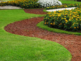 Commercial Landscaping & Maintenance