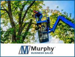 Tree Service in South Central Montana