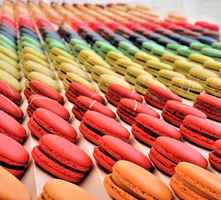 luxe-french-macaron-cafe-best-location-not-disclosed-texas