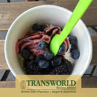 Franchise Frozen Yogurt & Sweets Store for Sale