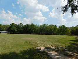 East TX Commercial Land & Horse Facility For Sale