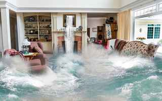 flood-restoration-and-plumbing-businesses-combined-las-vegas-nevada