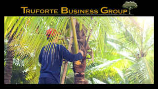 Tree Service Business for Sale!!!