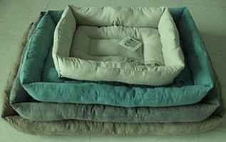 Seller Financing! Consider all offers Pet Bed Co.