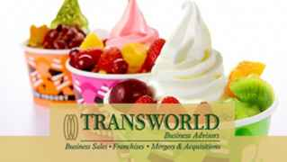 28-Yr-Old Yogurt Franchise - Friendswood