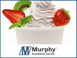 Ice Cream and Frozen Yogurt - Good Cash Flow