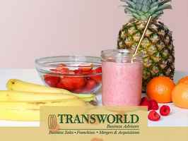 Healthy Smoothie Franchise Resale