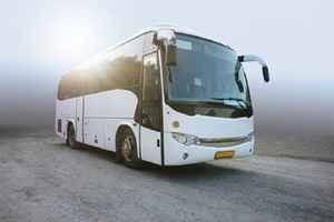 Highly Profitable Bus Transportation Business