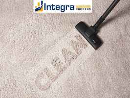 Professional Carpet Cleaning Business