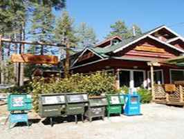 cafe-established-eatery-idyllwild-california