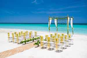 beach-wedding-business-in-florida