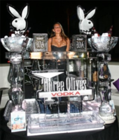 ice-sculpting-deerfield-beach-florida