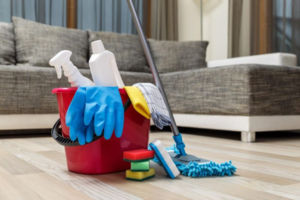 Cleaning Business (Swift Recovery Post-Covid!)