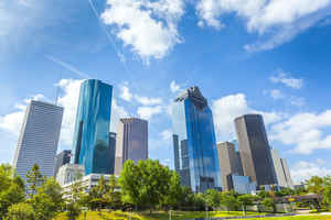 Dominate Houston with this Brokerage Business