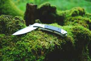 Specialty E-Commerce Online Knife Retailer
