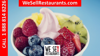 Turn-Key Frozen Yogurt Shop for Sale