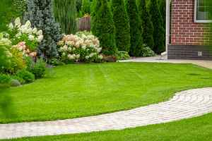 Profitable, Well-established Landscaping Company
